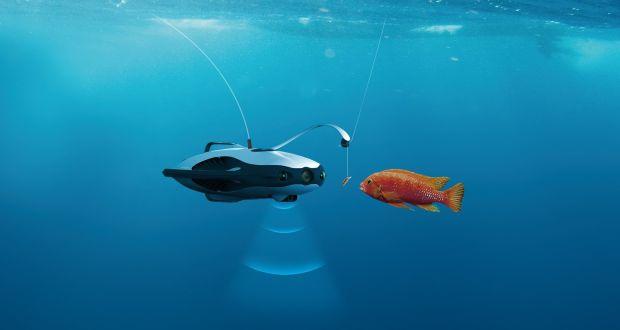 Curso de Pesca Submarina Online